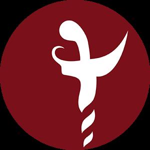 Logo Javawebster Lingkaran 300px